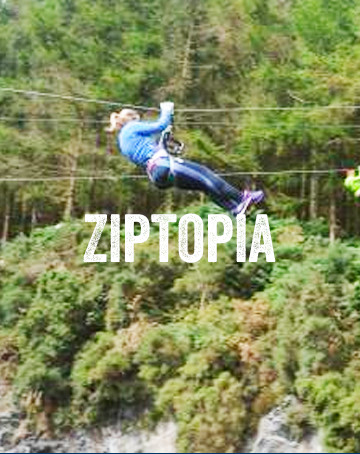 Zipline Tree Top Course