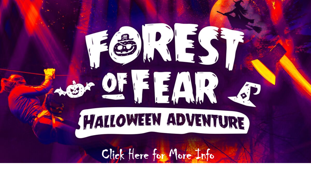 forest of fear image